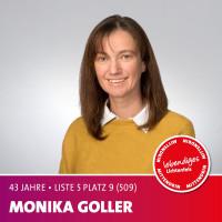 Monika Goller Alter: 43 Jahre | Beruf: Angestellte der Erzdiözese Bamberg Mir ist wichtig, das Potential unserer Stadt zu fördern & für jedes Alter das Leben familien- & umweltfreundlich zu gestalten sowie Arbeitplätze zu sichern.